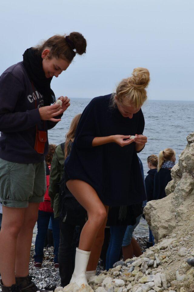 Elever samler sten i naturen