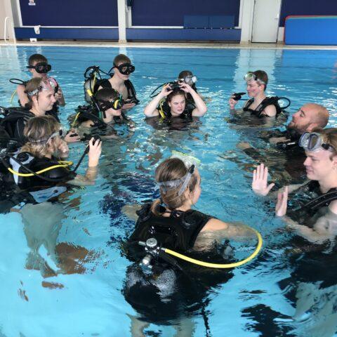 1.g dykker i svømmehal
