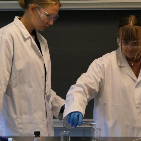 Elever laver nylon i kemi